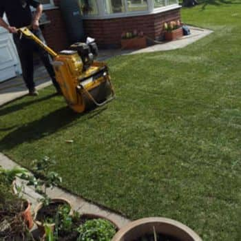 garden turf laying